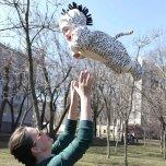 Фотография профиля Анна Шевченко на Вачанге