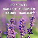 Фотография профиля Татьяна Малафеева на Вачанге