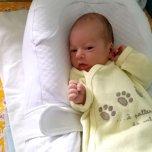 Фотография ребенка Арсентий на Вачанге