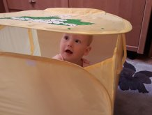 Отчёт по занятию Наводим порядок с малышом в Wachanga!