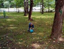 Отчёт по занятию Игры с мячом на свежем воздухе в Wachanga!