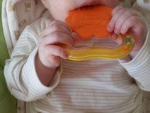 Отчёт по занятию Детское зубное кольцо в Wachanga!