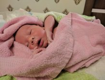 Отчёт по занятию Как удалить корочки на голове малыша в Wachanga!