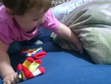 Отчёт по занятию Игра «Найди игрушку» в Wachanga!