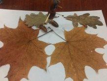 Отчёт по занятию Осенняя аппликация в Wachanga!