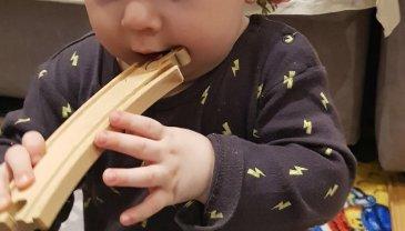 Отчёт по занятию Чем нельзя кормить малыша в Wachanga!