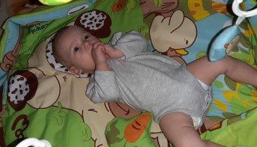 Отчёт по занятию Развивающий коврик своими руками в Wachanga!