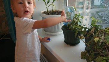 Отчёт по занятию Полейте цветы вместе с малышом в Wachanga!