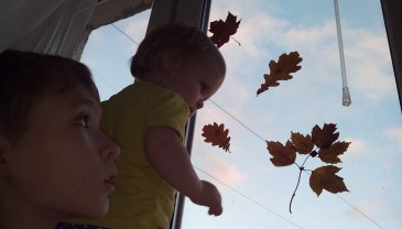 Отчёт по занятию Украсьте детскую комнату осенними листьями в Wachanga!