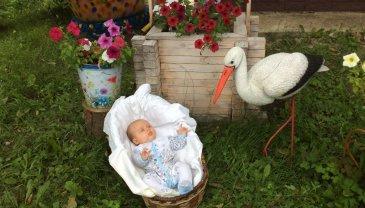 Отчёт по занятию Поездка с младенцем на юг в Wachanga!