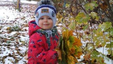Отчёт по занятию Палитра листьев в Wachanga!