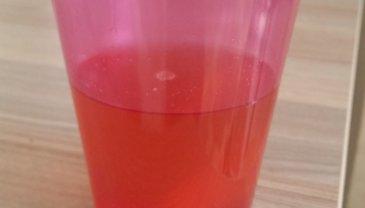 Отчёт по занятию Рецепт: Персиковый компот в Wachanga!