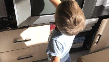 Отчёт по занятию Малыш помогает по дому в Wachanga!