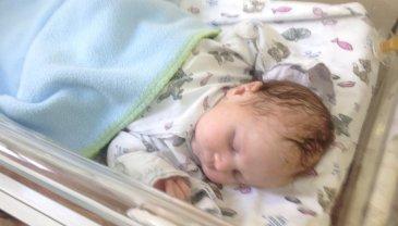 Отчёт по занятию Организуйте профессиональную фотосессию для новорожденного в Wachanga!