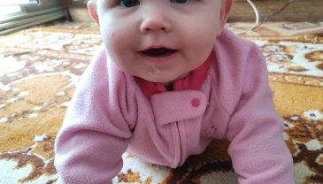 Отчёт по занятию Зрительное и слуховое восприятие малыша в 7 месяцев в Wachanga!