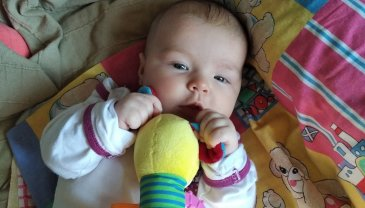 Отчёт по занятию Развитие речи малыша в 2 месяца в Wachanga!