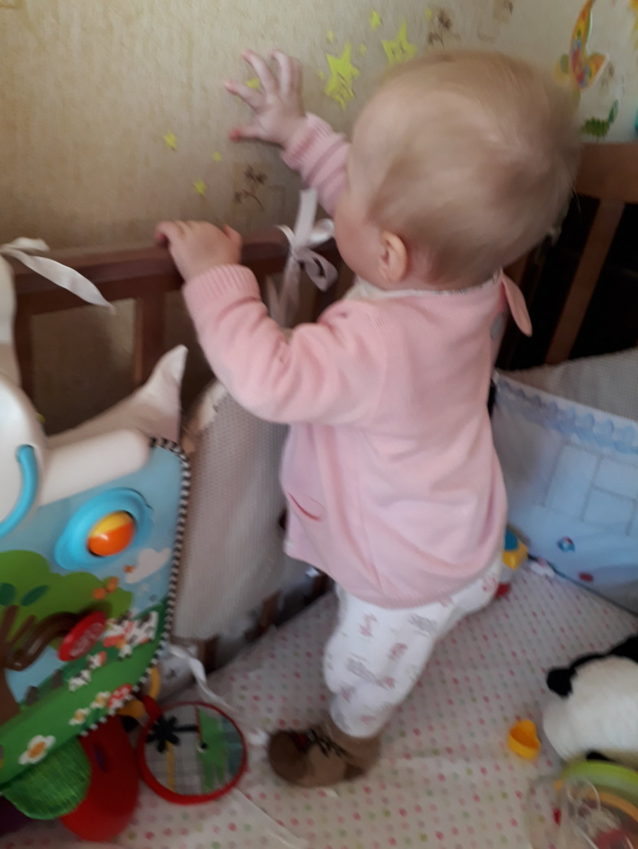 Отчёт по занятию Достань игрушку в Wachanga!