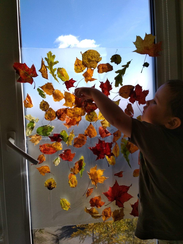 Отчёт по занятию Осенняя аппликация на окне в Wachanga!