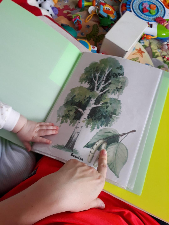 Отчёт по занятию Сделайте для малыша картинки для рассматривания в Wachanga!
