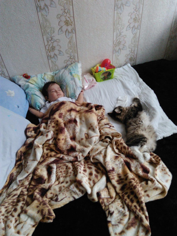 Отчёт по занятию Сон ребенка в 5 месяцев в Wachanga!