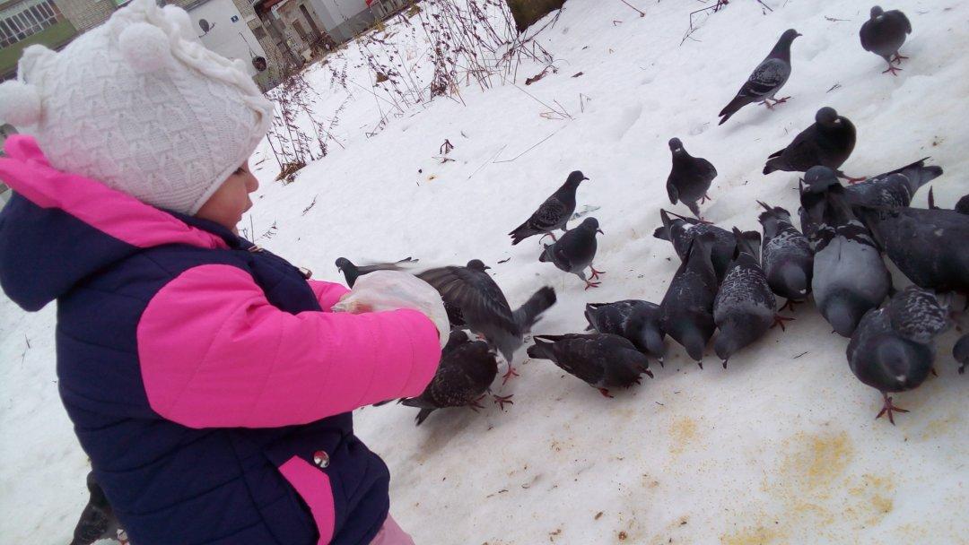 Отчёт по занятию Сходите с малышом на прогулку и покормите птиц  в Wachanga!