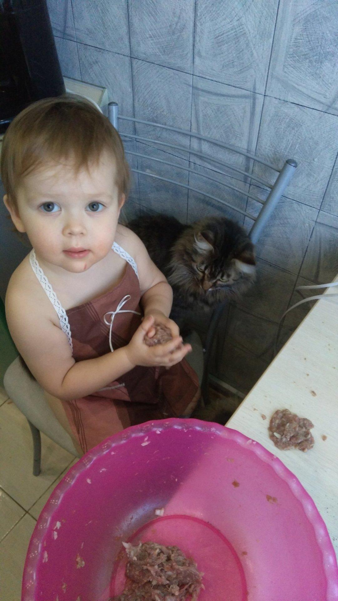 Отчёт по занятию Маленький поварёнок в Wachanga!
