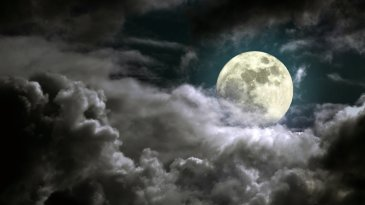 View the Full Moon