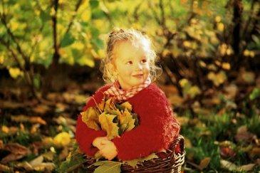 Золотая осень: собираем природный материал