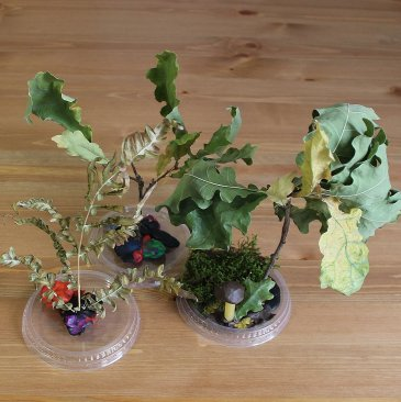 "Make a craft called ""The Fairy Forest"" with your kid"