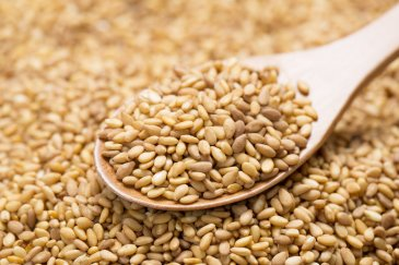 Sesame seeds for breastfeeding