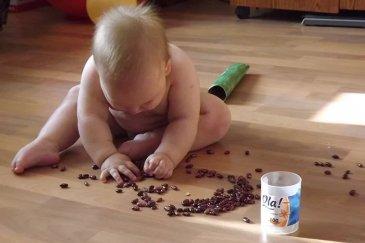 Первые игры с фасолью