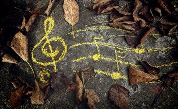 Осенние танцы