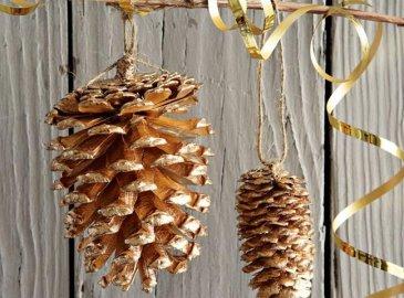 Decorations of fir cones