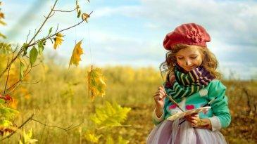 Arrange an autumn open-air painting