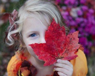 Успеть за осень