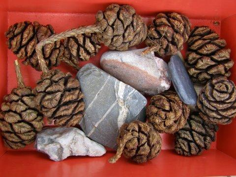 природная сенсорная коробочка с шишками и камнями