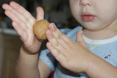 Картинка к занятию Игра с грецкими орехами в Wachanga