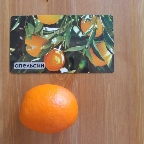 дегустация ребёнком новых фруктов попробовать апельсин