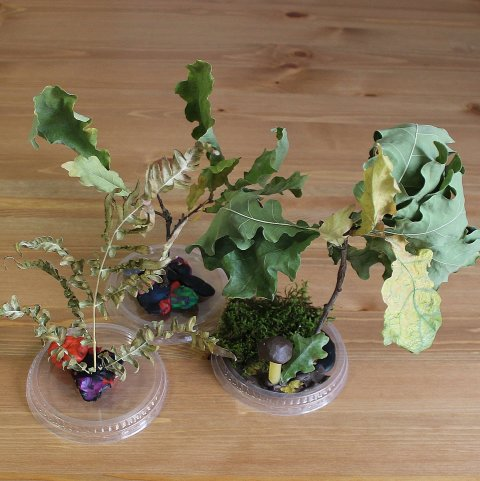 """Make a craft called """"The Fairy Forest"""" with your kid"""