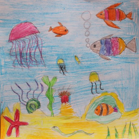 Activity picture for Draw with coloured pencils in Wachanga