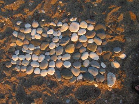 Картинка к занятию Игра на меткость на пляже в Wachanga