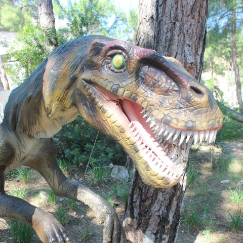 Visit a Dinopark with your kid
