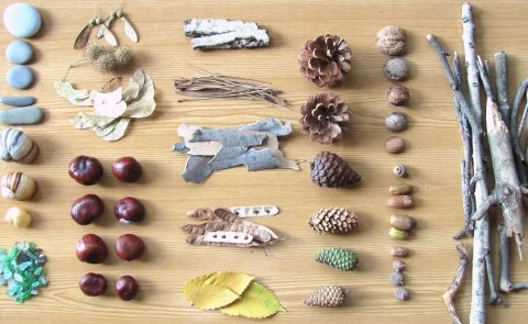 Collection of natural materials