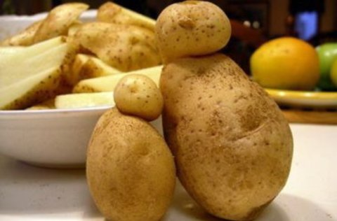 Play with potatoes