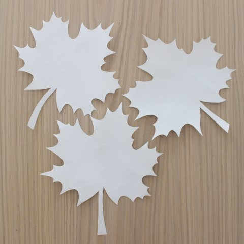 Activity picture for Decorate your home with paper fallen leaves in Wachanga