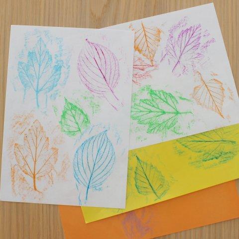 Картинка к занятию Отпечатки листьев в Wachanga