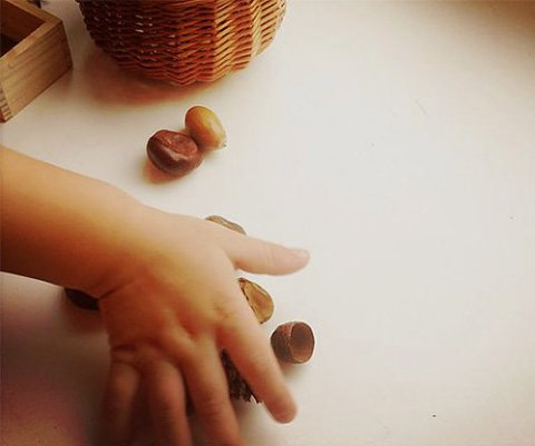 Playing with acorns