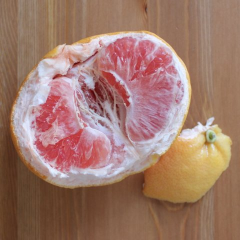 Цитрусовые фрукты богаты витаминами и микроэлементами