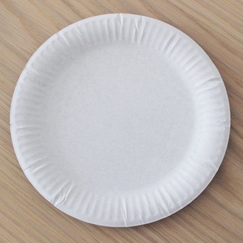 белая картонная тарелка для изготовления поделки
