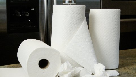 Playing with paper towels